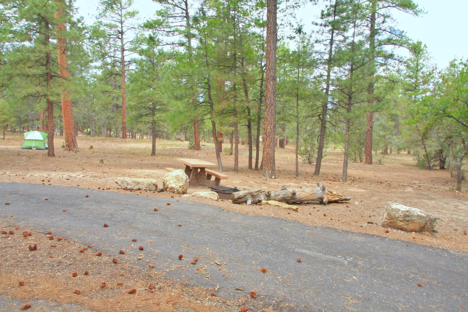 Picnic table, fire pit, and parking spot, Mather CampgroundThe picnic table, fire pit, and parking spot for Aspen Loop 5 Mather Campground