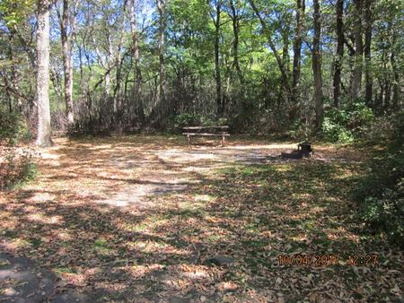 Loft Mountain Campground Site C98Picnic table and fire pit on campsite