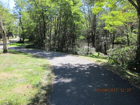 Loft Mountain Campground - Site 100Site driveway