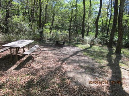 Loft Mountain Campground Site C104Picnic table and fire pit on campsite