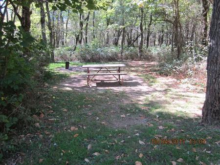 Loft Mountain Campground Site C105Picnic table and fire pit on campsite