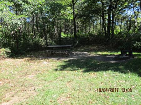 Loft Mountain Campground Site C107Picnic table and fire pit on campsite