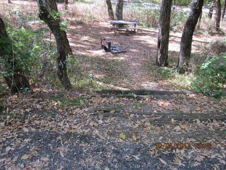 Loft Mountain Campground Site D108Picnic table and fire pit on campsite
