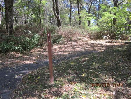 Loft Mountain Campground - Site D109Site post and driveway