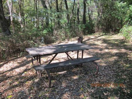 Loft Mountain CampgroundPicnic table and fire pit on campsite