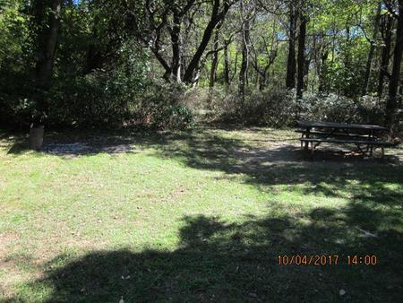 Loft Mountain Campground Site D110Picnic table and fire pit on campsite