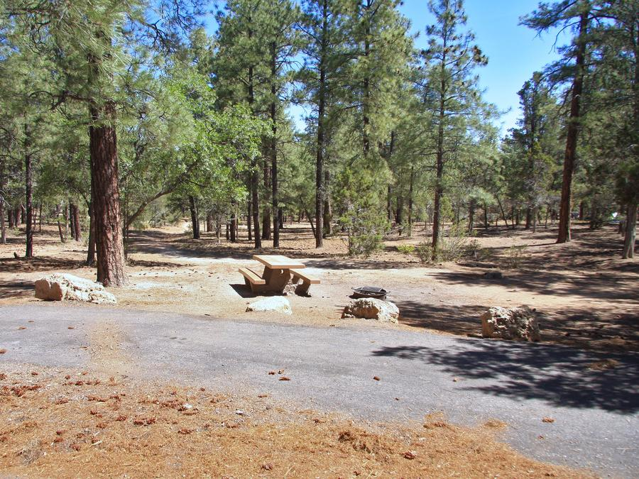 Parking spot, fire pit, and picnic table, Mather Campground