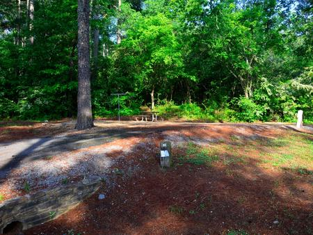 Sweetwater Campground, campsite #51.