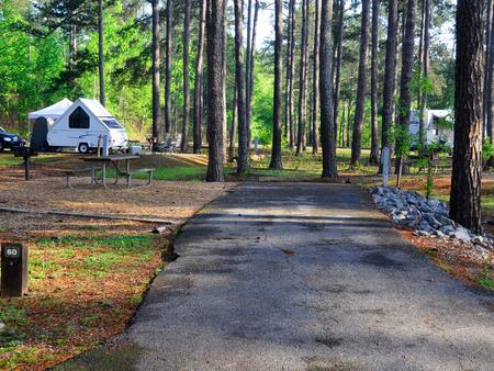 Sweetwater Campground, campsite #60.