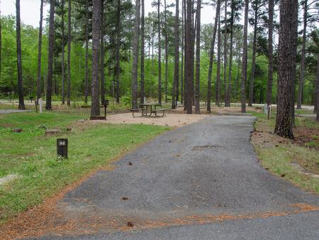 Sweetwater Campground, campsite #62.