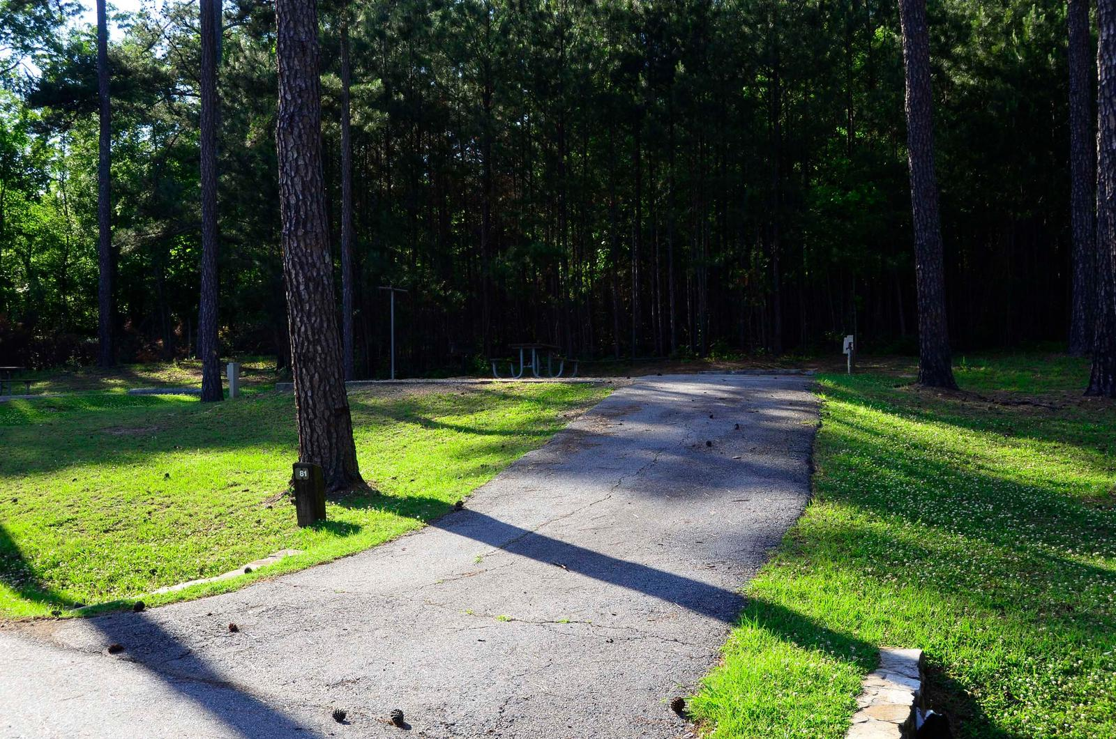 Sweetwater Campground, campsite #81.