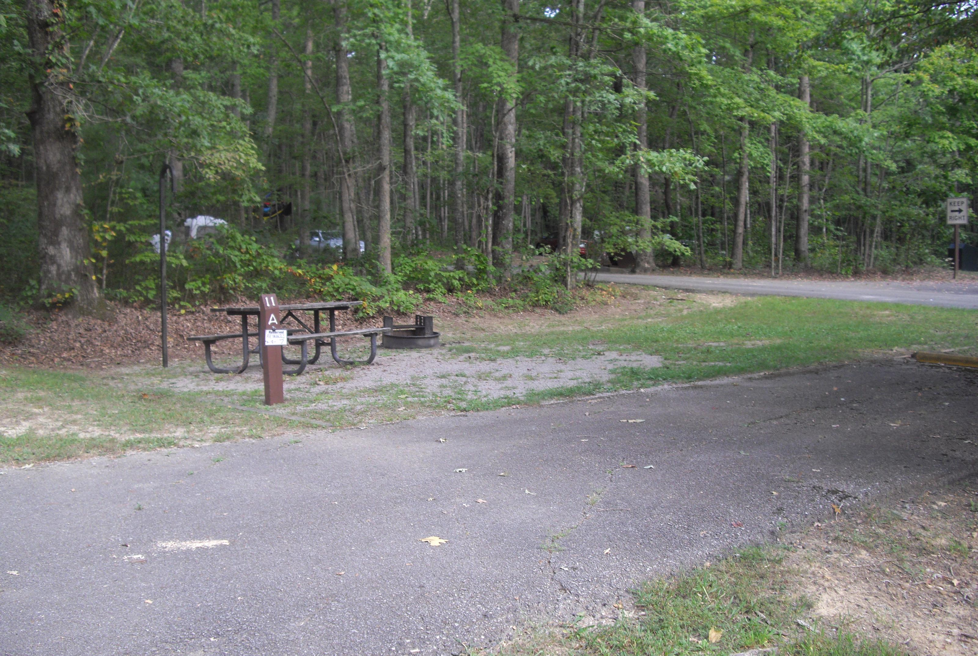 Picnic table and fire ring sitting on gravel pad next to paved parking spot.Site number 11 in Loop A at Bandy Creek Campground.