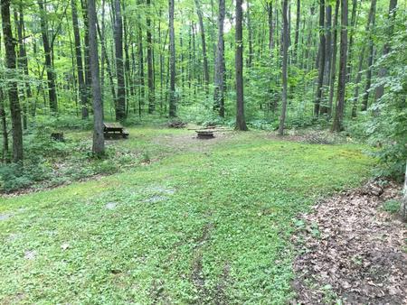Tracy Ridge Site 1