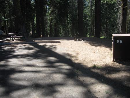 Site 85, no generator loop, partial shade