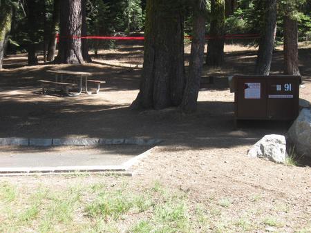 Site 91, no generator loop, partial shade