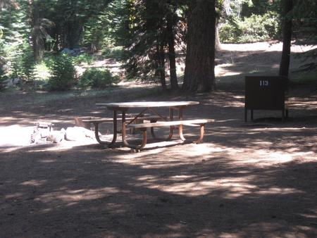 site 113, no generator loop, walk-in site, one vehicle, partial shade