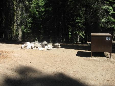 site 120, no generator loop, walk-in site, one vehicle, partial shade, near restrooms