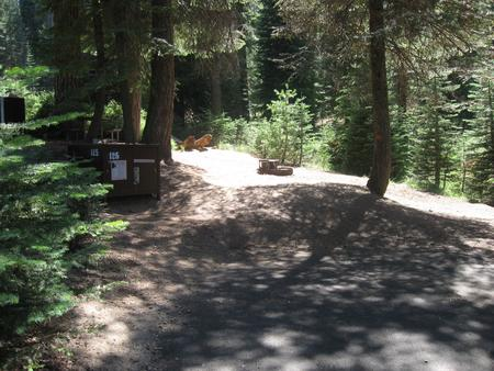 site 125, no generator loop, partial shade