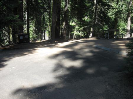 site 126, no generator loop, partial shade