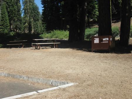 site 129, partial shade