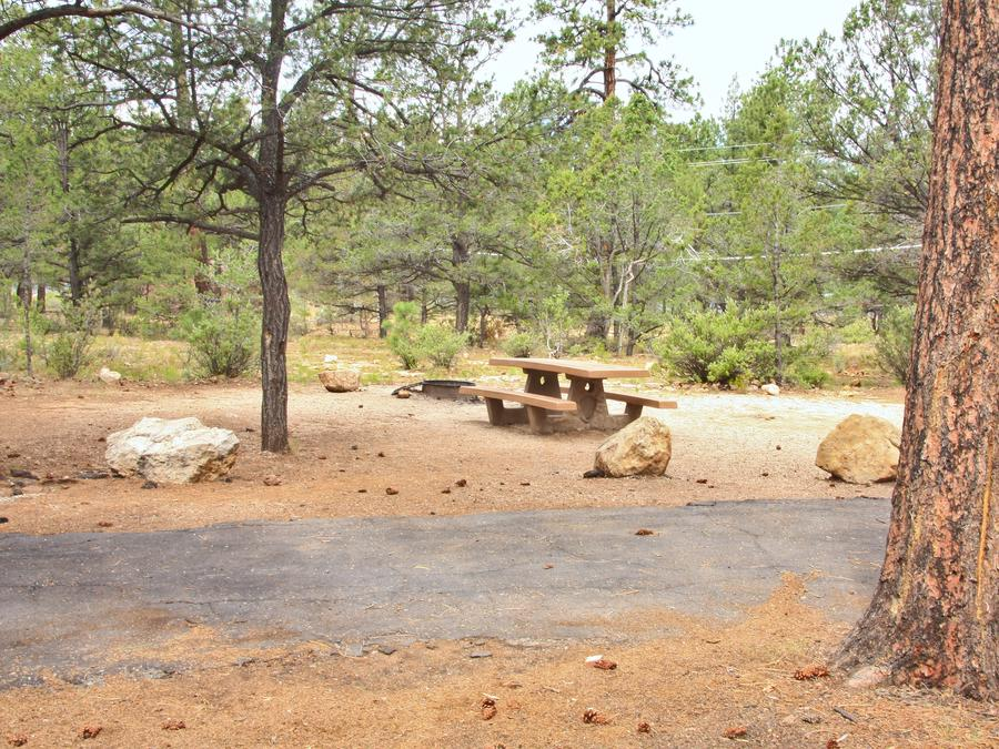 Picnic table, fire pit, and parking spot, Mather CampgroundThe picnic table, fire pit, and parking spot for Aspen Loop 29, Mather Campground