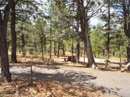 Picnic table, fire pit, and parking spot, Mather CampgroundThe picnic table, fire pit, and parking spot for Aspen Loop 31, Mather Campground