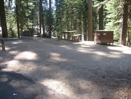 site 144, partial shade
