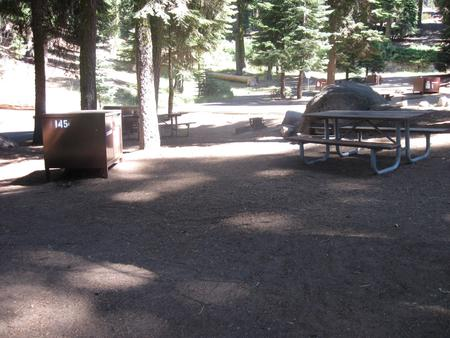 site 145, partial shade