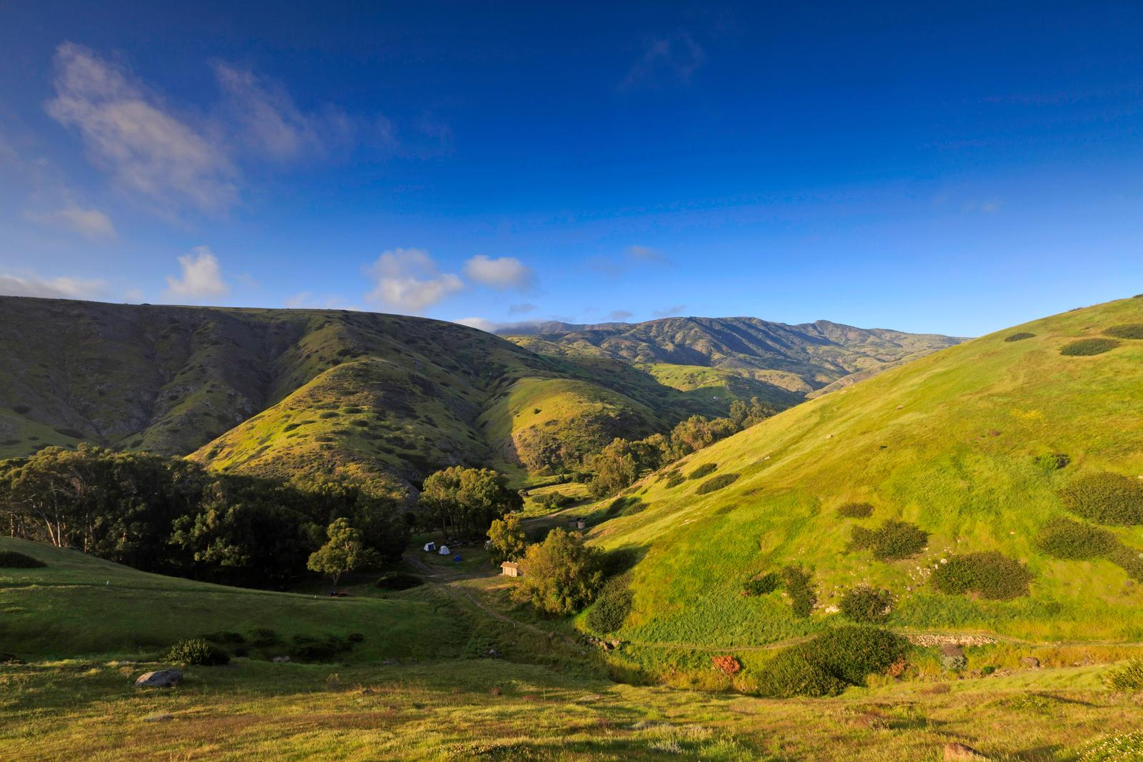 View of canyon nestled in low rolling, grass covered hills.Scorpion Canyon Campground, Santa Cruz Island