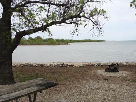 Site 12 in Turkey Point Campground