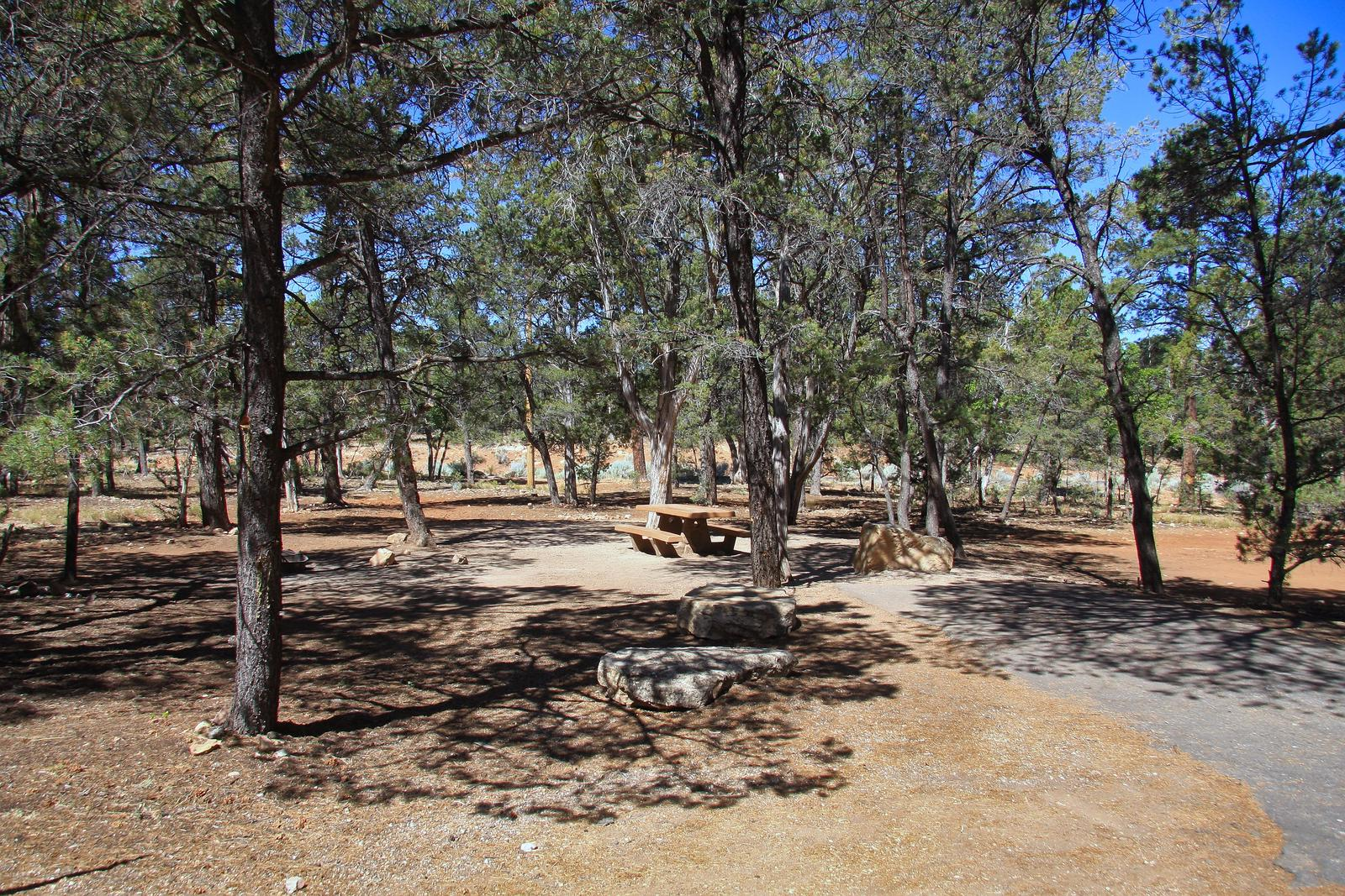 Picnic table, fire pit, and parking spot, Mather CampgroundThe picnic table, fire pit, and parking spot for Aspen Loop 42, Mather Campground