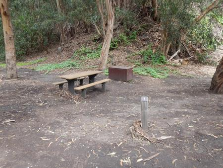 Campsite eucalyptus forested area with picnic table, food storage box, and campsite number.Lower Loop - 001