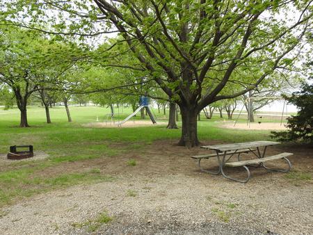 Site 26 in Turkey Point Campground