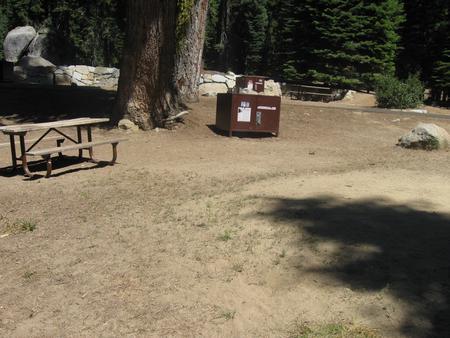 Site 160, partial shade, near meadow