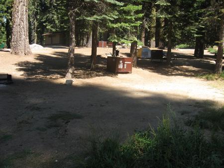 Site 162, sunny, near meadow