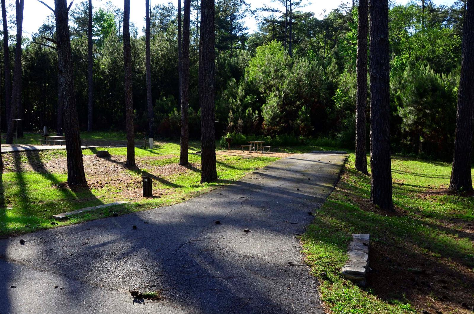 Sweetwater Campground Site 85