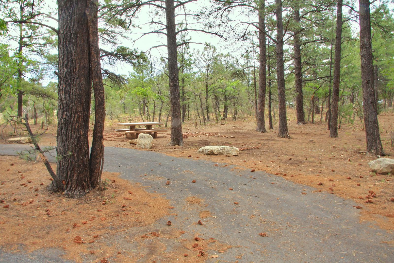 Picnic table and fire pit, Mather CampgroundPicnic table and fire pit Aspen Loop 60, Mather Campground