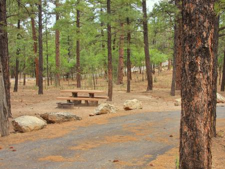 Picnic table, fire pit, and parking spot, Mather CampgroundPicnic table, fire pit, and parking spot for Fir Loop 63, Mather Campground