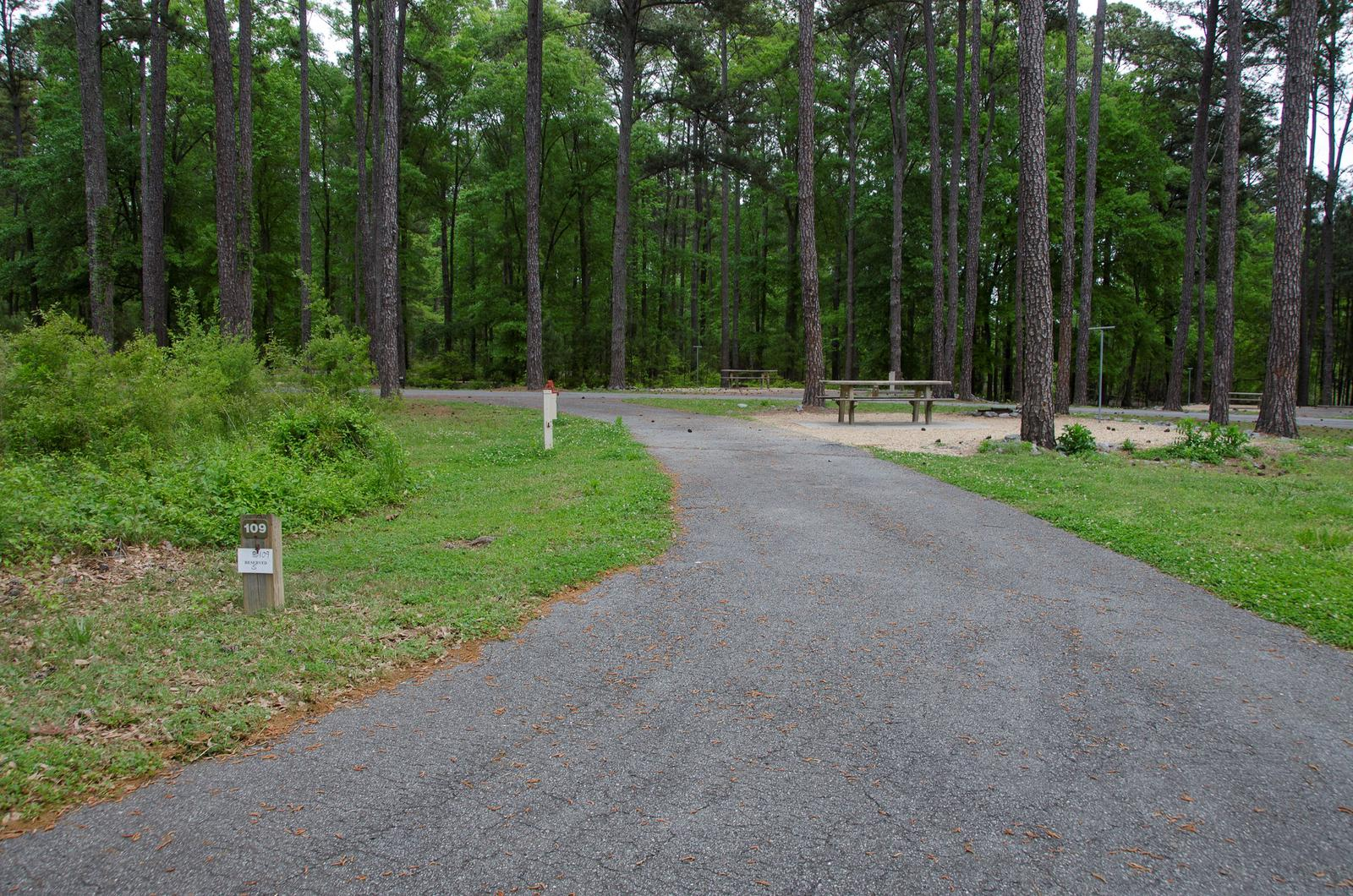 Sweetwater Campground Site 109