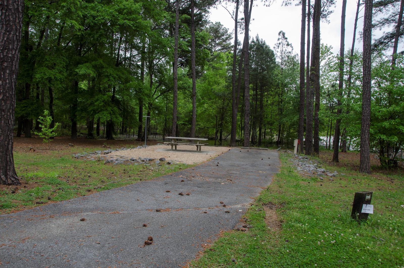 Sweetwater Campground Site 116