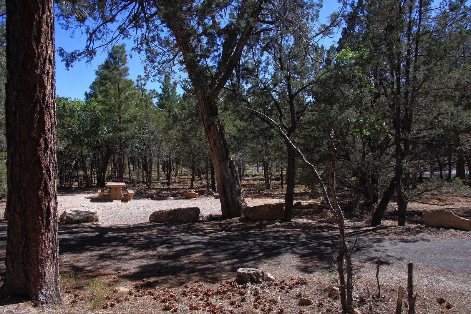 Picnic table, fire pit, and parking spot, Mather CampgroundPicnic table, fire pit, and parking spot for Fir Loop 79, Mather Campground