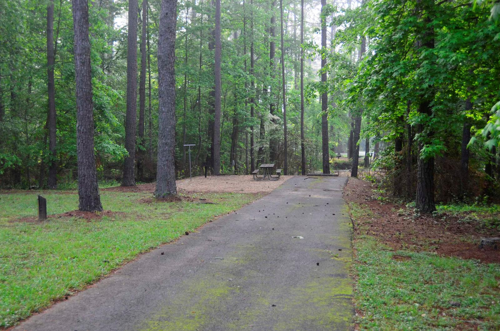 Sweetwater Campground Site 146