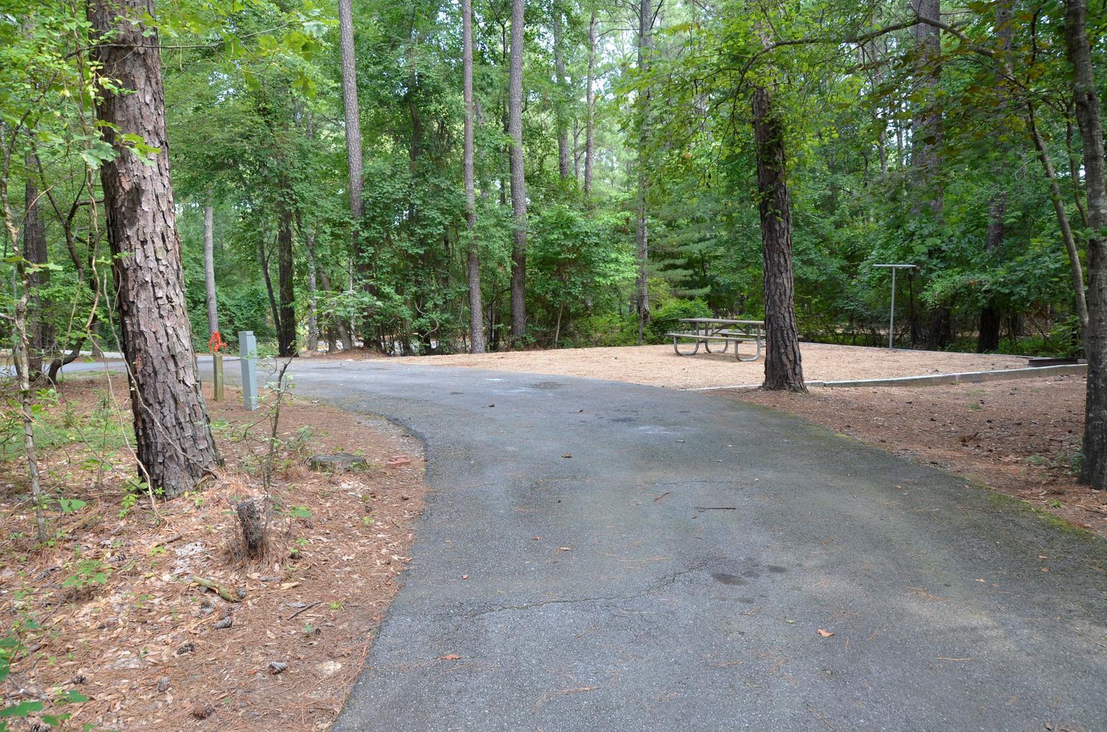 McKinney Campground Site 62