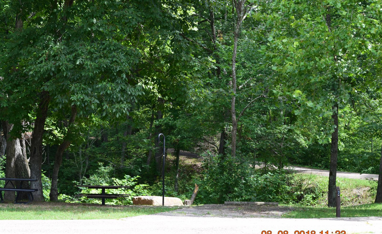 Campsite 7 showing parking spur, lantern post and fire ringCampsite 7
