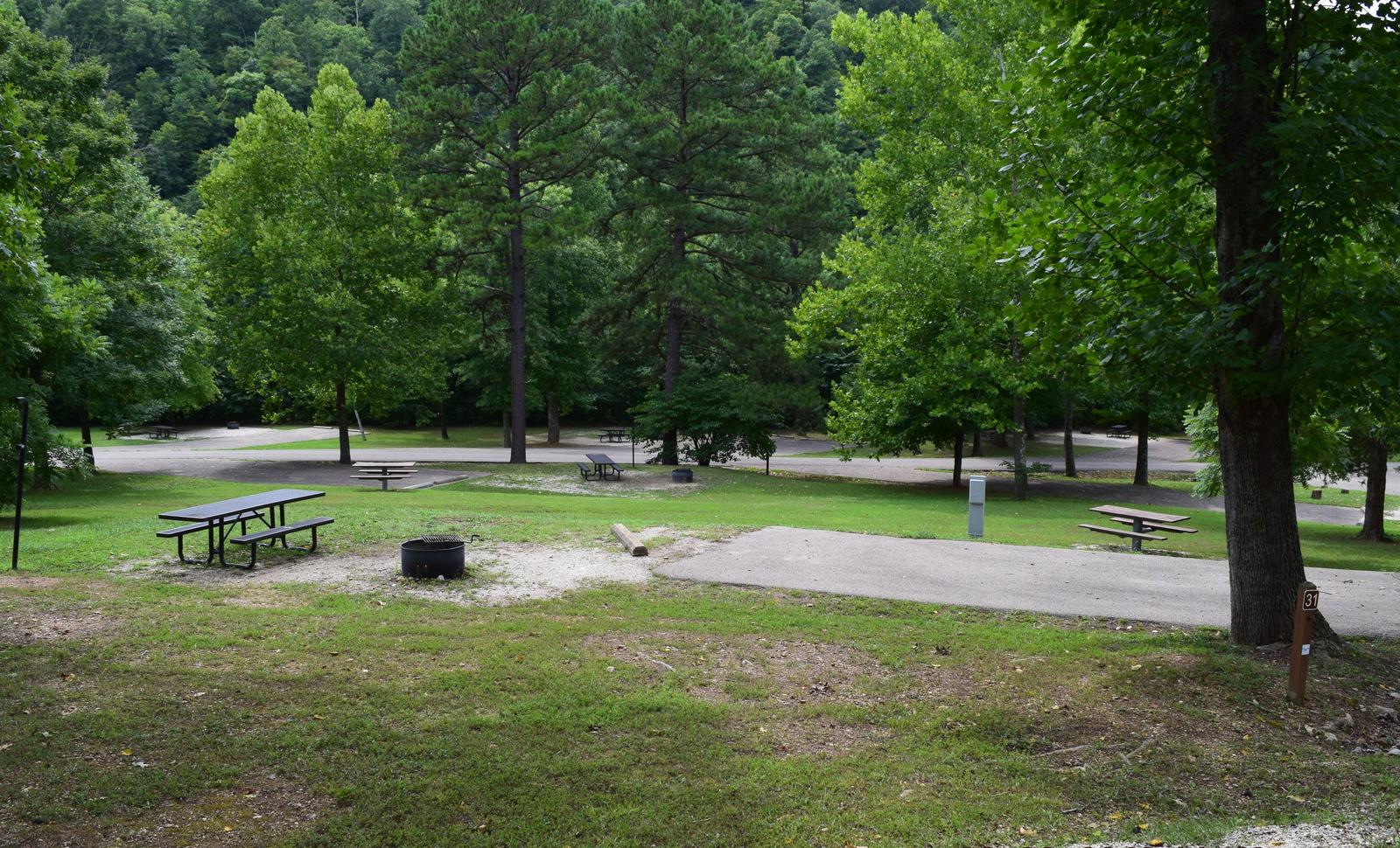 Campsite 31 showing parking spur, picnic tables, and fire ringCampsite 31