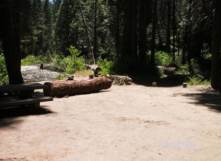 Soquel CampgroundSite 8
