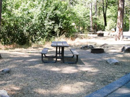 Spring Cove CampgroundSite 1