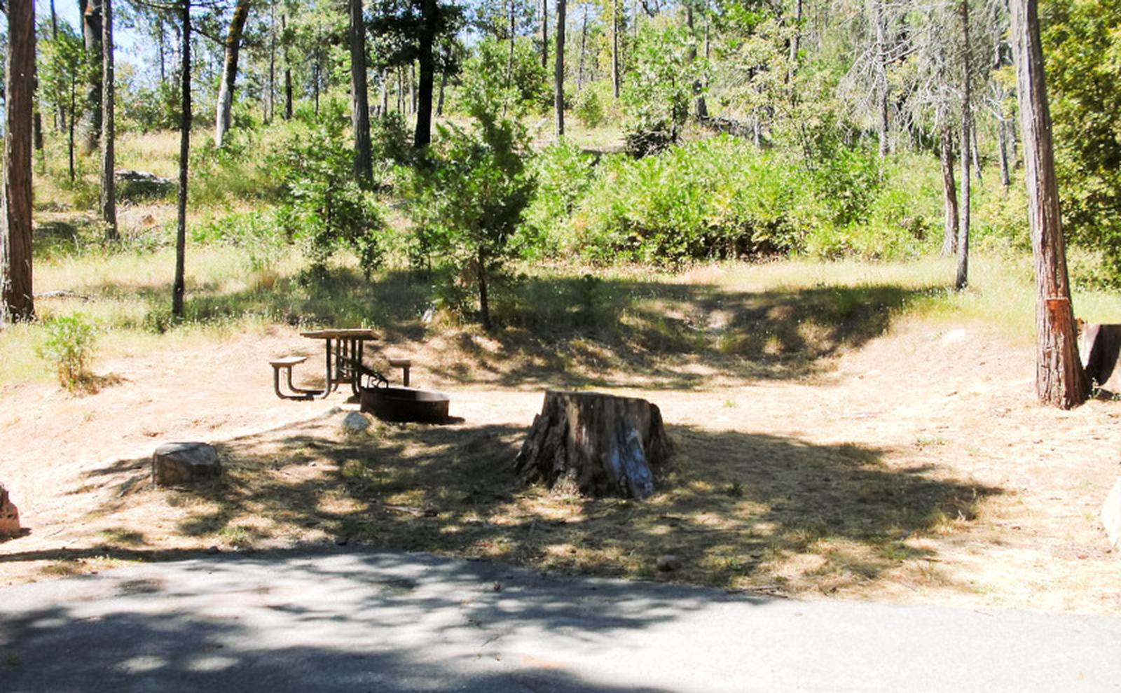 Spring Cove CampgroundSite 21