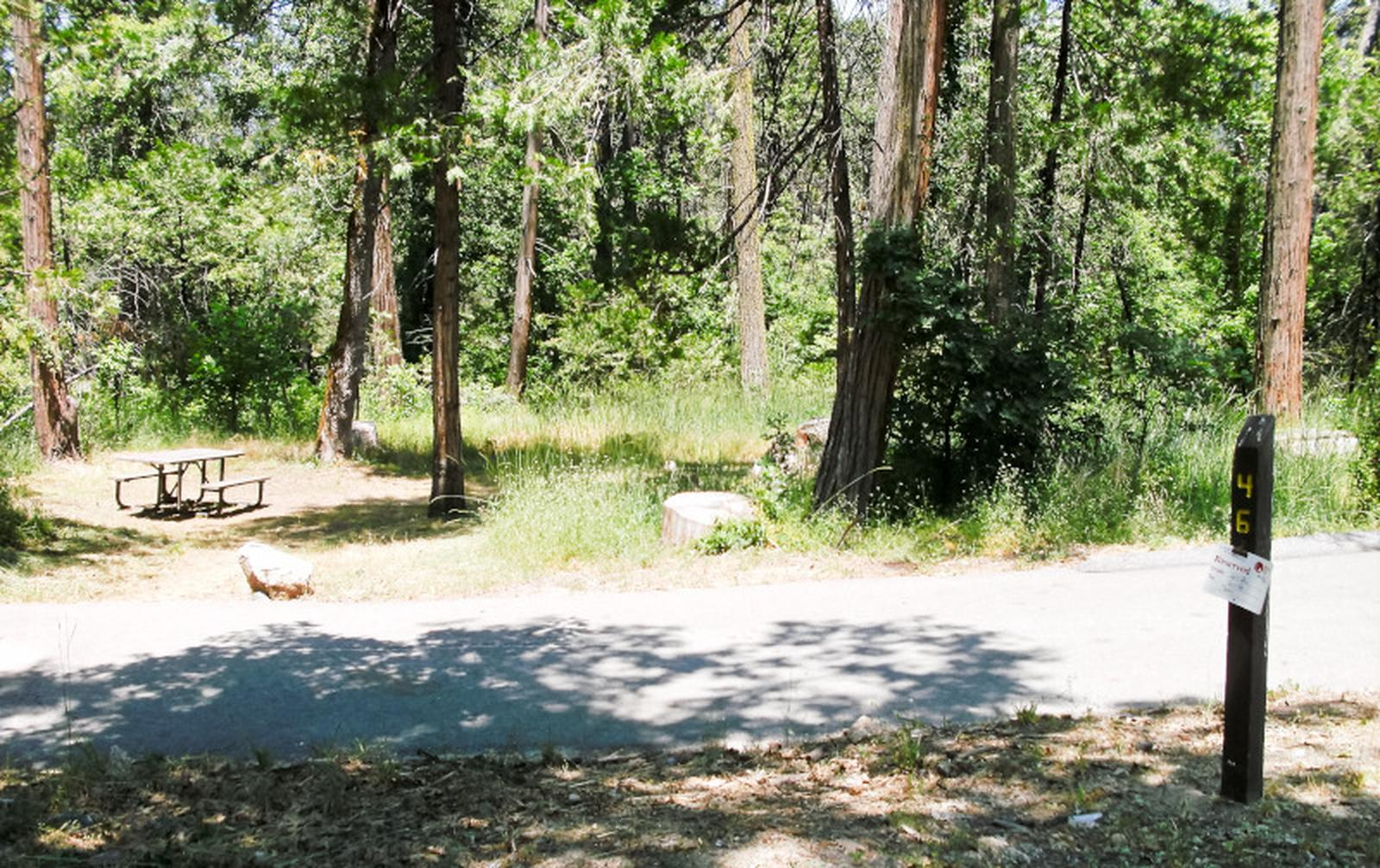 Spring Cove CampgroundSite 46