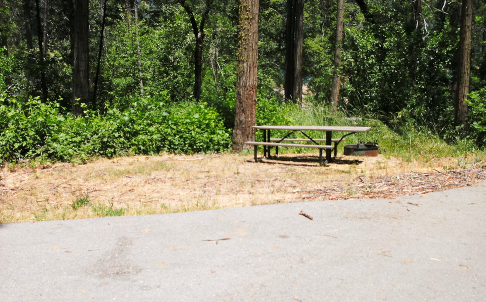 Spring Cove CampgroundSite 62